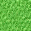 Pashmina Apple green