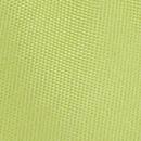 Fliege Kiwi