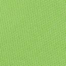 Fliege Apfelgrün
